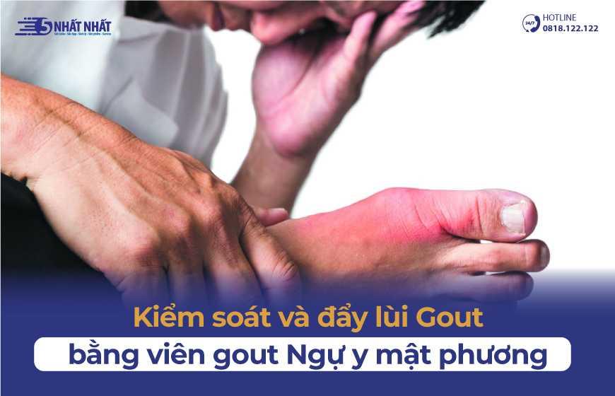Kiểm soát và đẩy lùi gout hiệu quả bằng Viên gout Ngự y mật phương